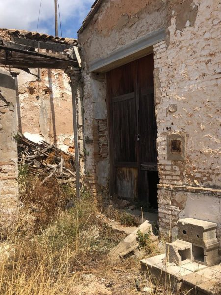 Hort Ros perill menuts - Alzira Radio notícies d'Alzira