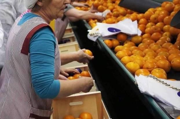 dones magatzem agricola efe Noticia Ampliada Noticia Grande