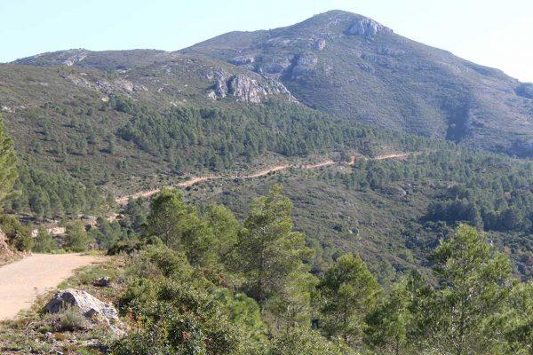 Amics de la Murta proposa una fundació municipal de protecció dels paratges