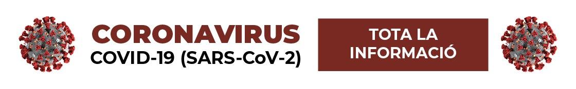 banner radio coronavirus VAL - Alzira Radio notícies d'Alzira